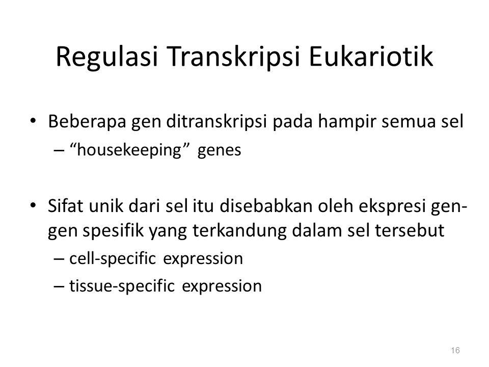 Regulasi Transkripsi Eukariotik