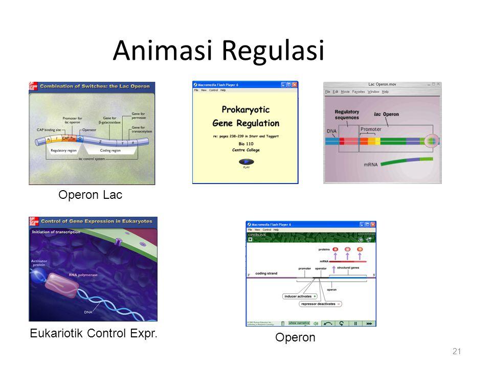 Animasi Regulasi Operon Lac Eukariotik Control Expr. Operon
