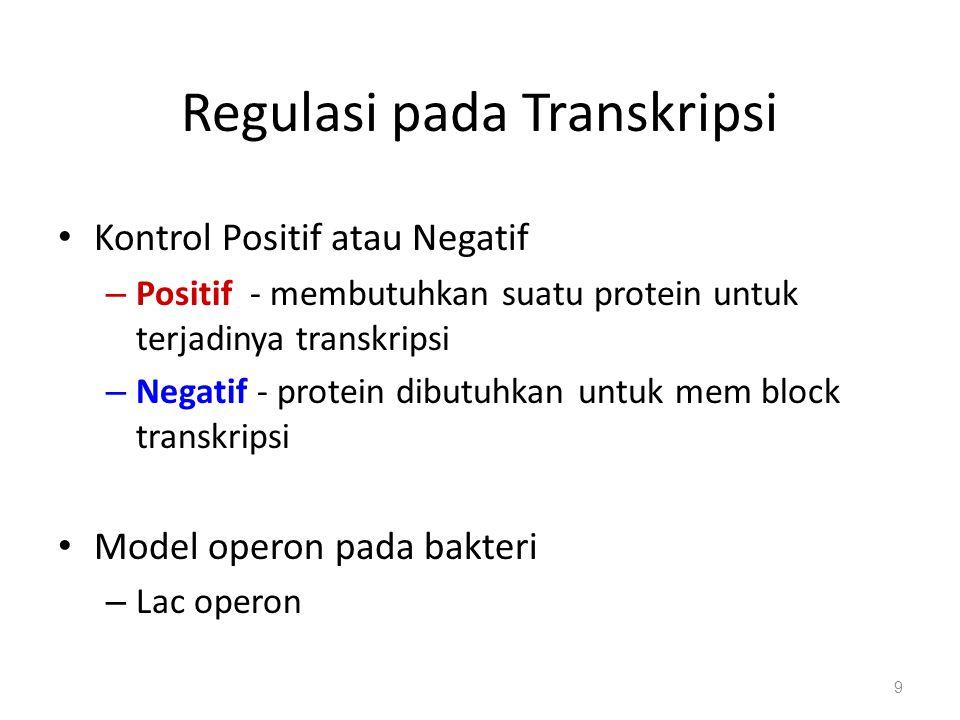 Regulasi pada Transkripsi