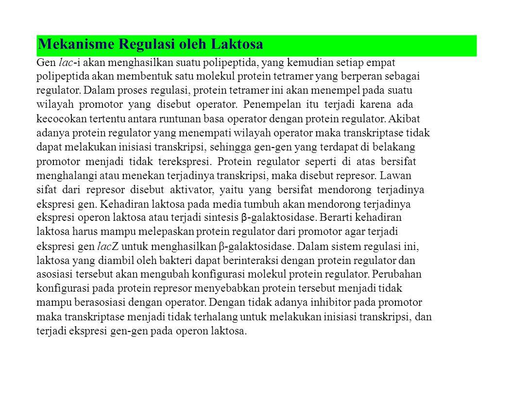 Mekanisme Regulasi oleh Laktosa