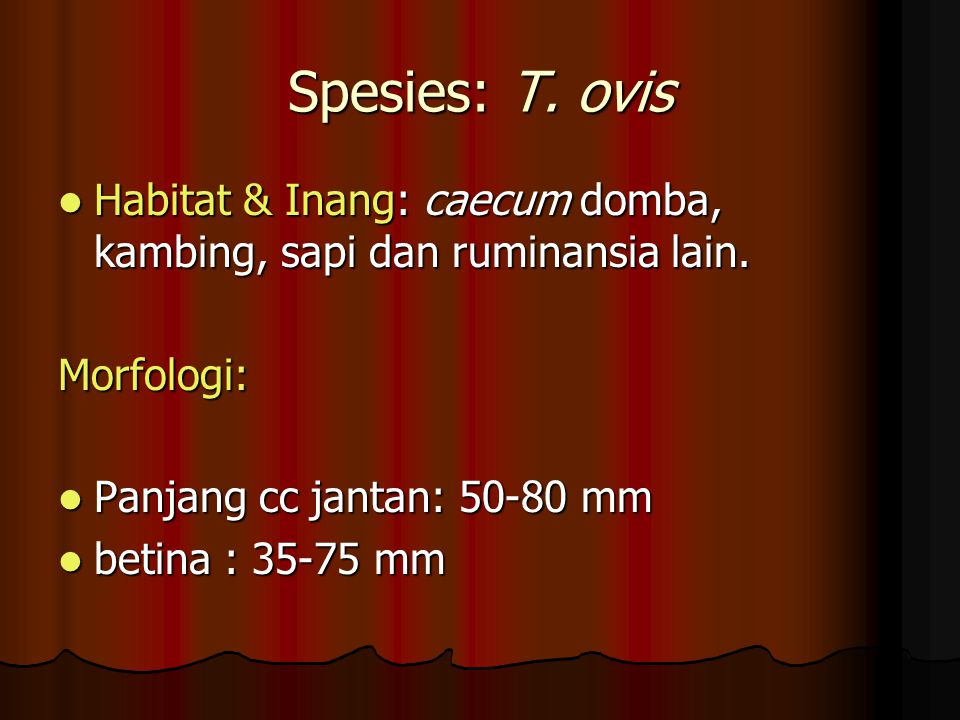 Spesies: T. ovis Habitat & Inang: caecum domba, kambing, sapi dan ruminansia lain. Morfologi: Panjang cc jantan: 50-80 mm.