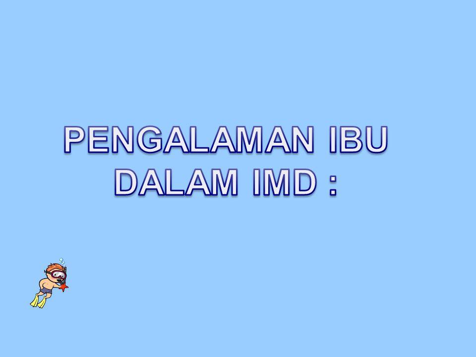 PENGALAMAN IBU DALAM IMD :