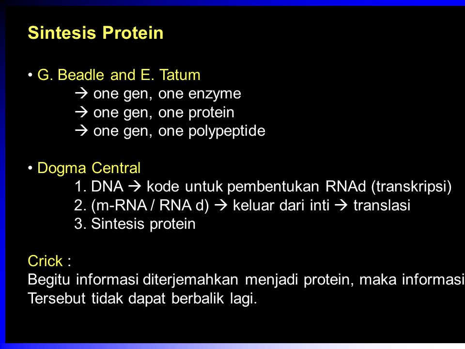 Sintesis Protein G. Beadle and E. Tatum  one gen, one enzyme