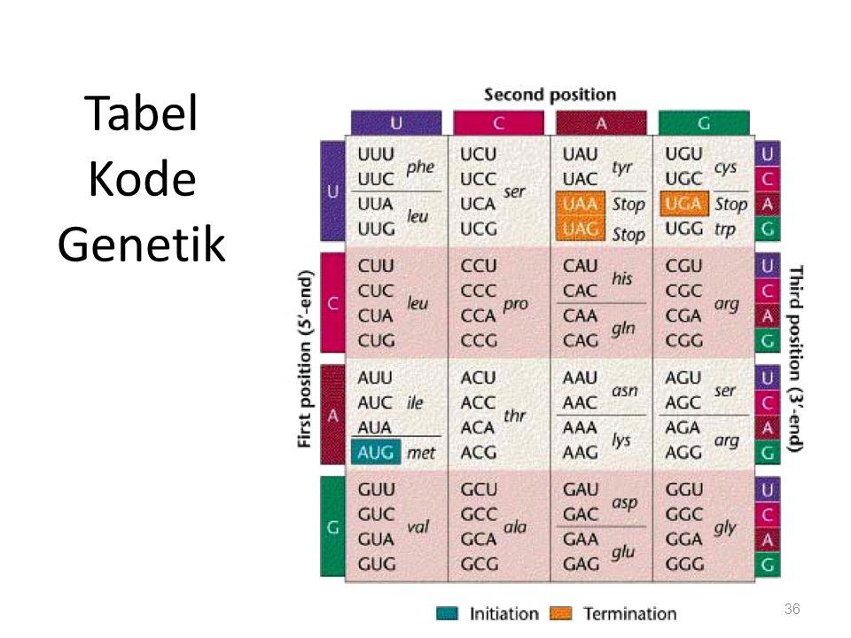Tabel Kode Genetik