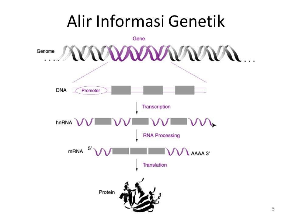 Alir Informasi Genetik