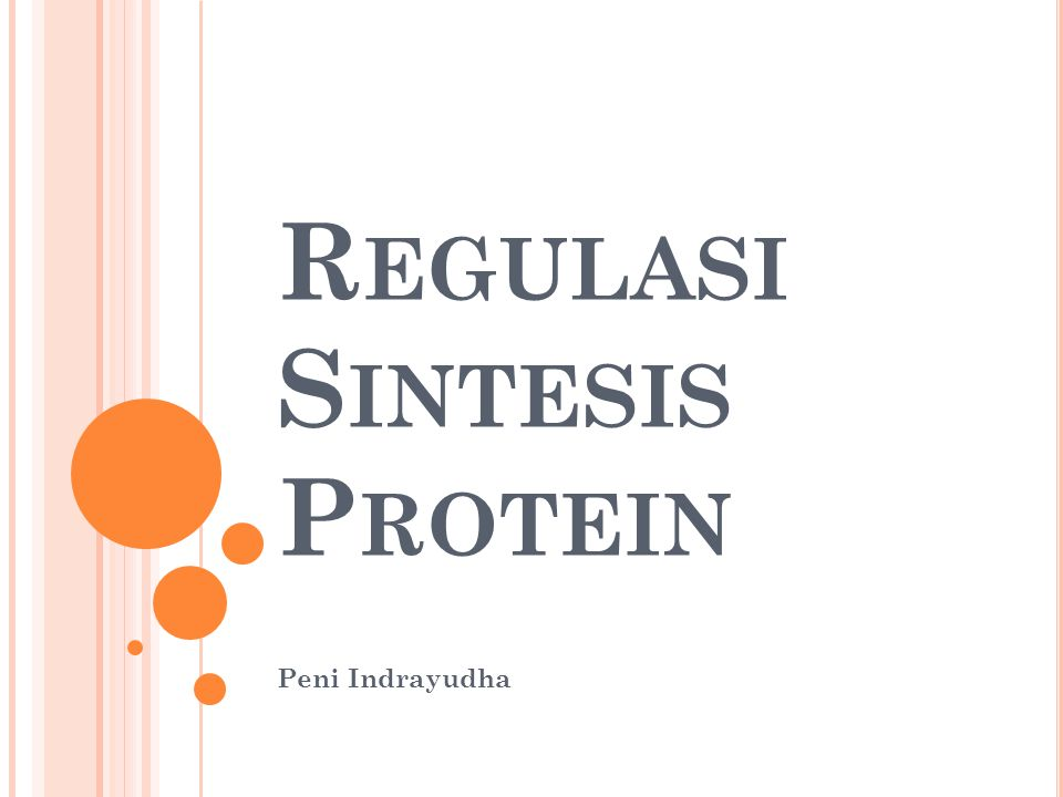 Regulasi Sintesis Protein
