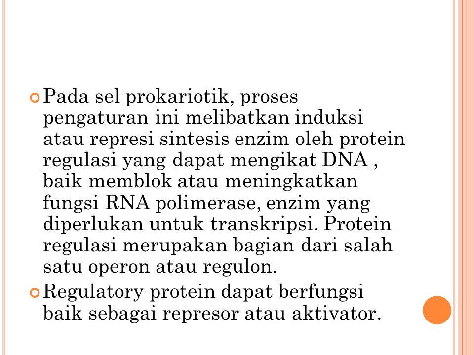 Pada sel prokariotik, proses pengaturan ini melibatkan induksi atau represi sintesis enzim oleh protein regulasi yang dapat mengikat DNA , baik memblok atau meningkatkan fungsi RNA polimerase, enzim yang diperlukan untuk transkripsi. Protein regulasi merupakan bagian dari salah satu operon atau regulon.
