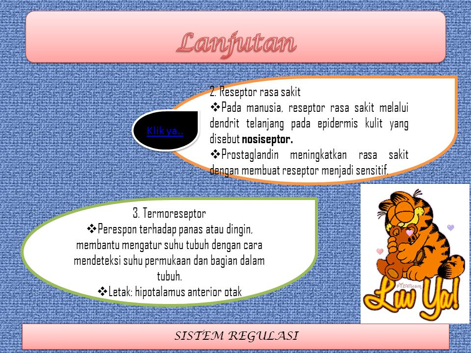 Letak: hipotalamus anterior otak
