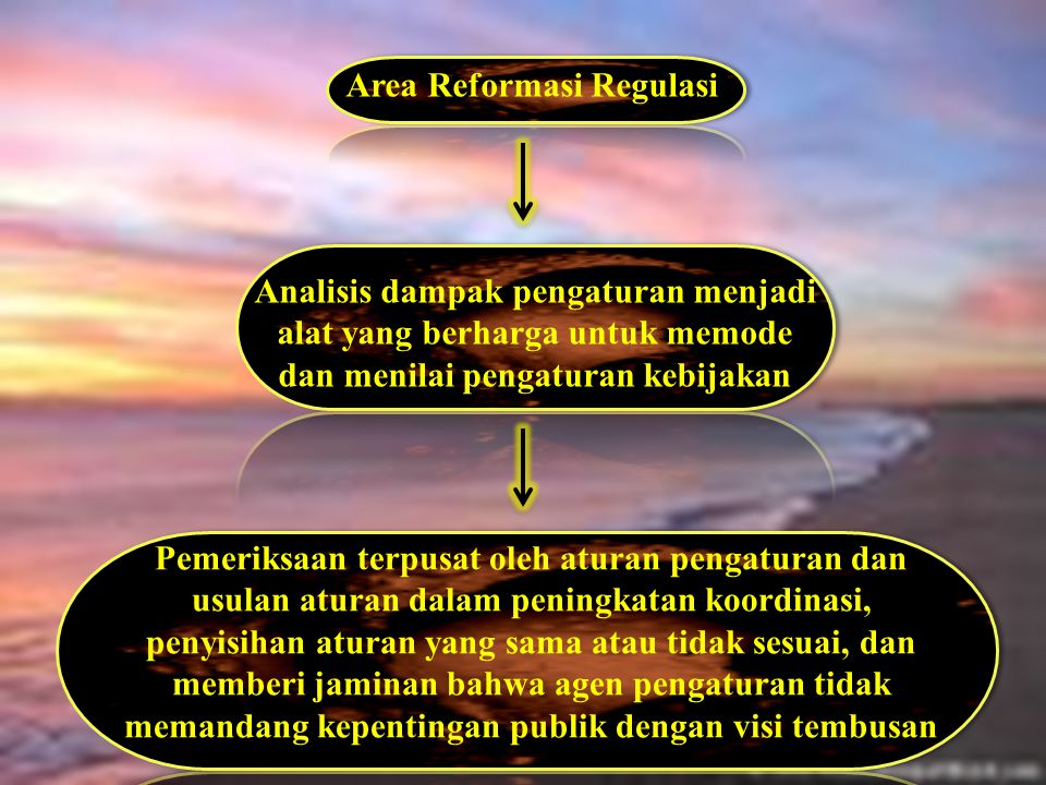 Area Reformasi Regulasi
