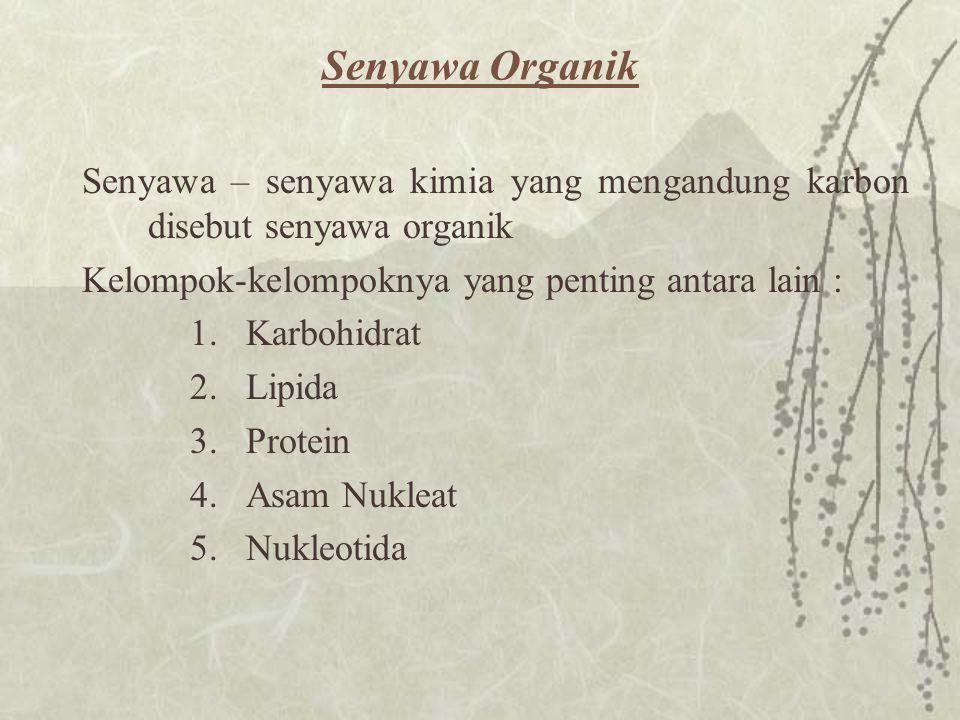Senyawa Organik Senyawa – senyawa kimia yang mengandung karbon disebut senyawa organik. Kelompok-kelompoknya yang penting antara lain :