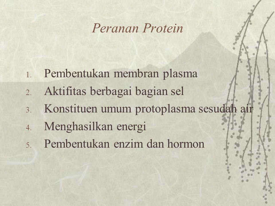 Peranan Protein Pembentukan membran plasma