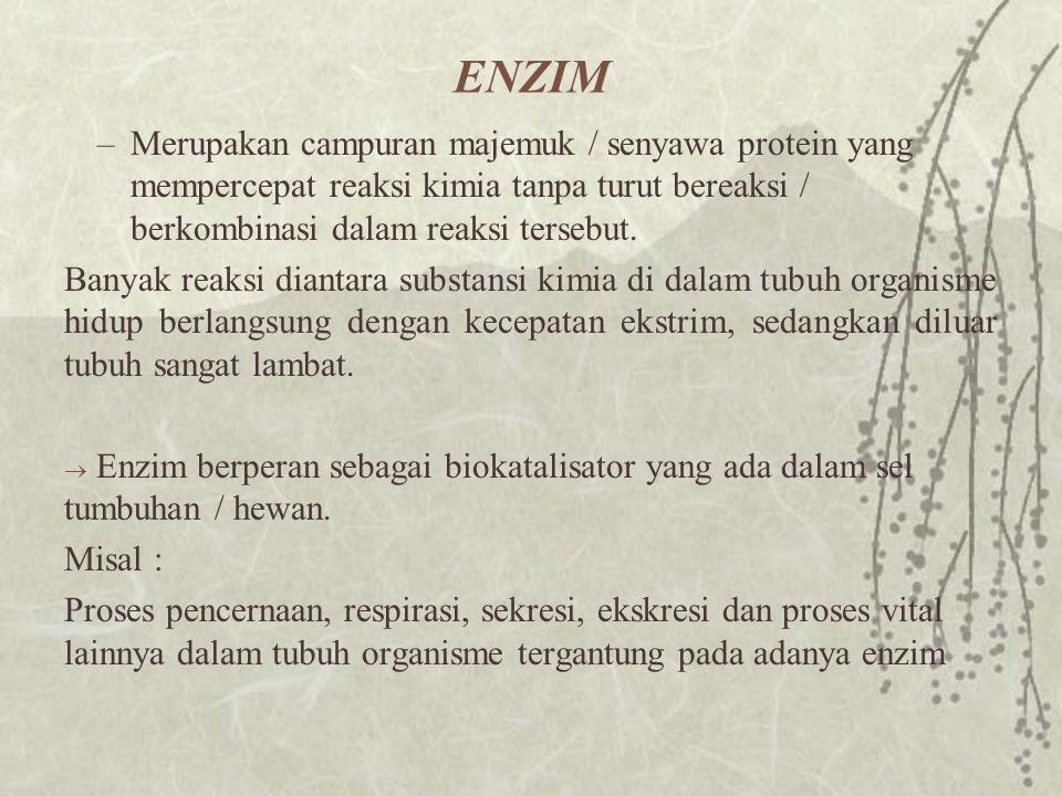 ENZIM Merupakan campuran majemuk / senyawa protein yang mempercepat reaksi kimia tanpa turut bereaksi / berkombinasi dalam reaksi tersebut.