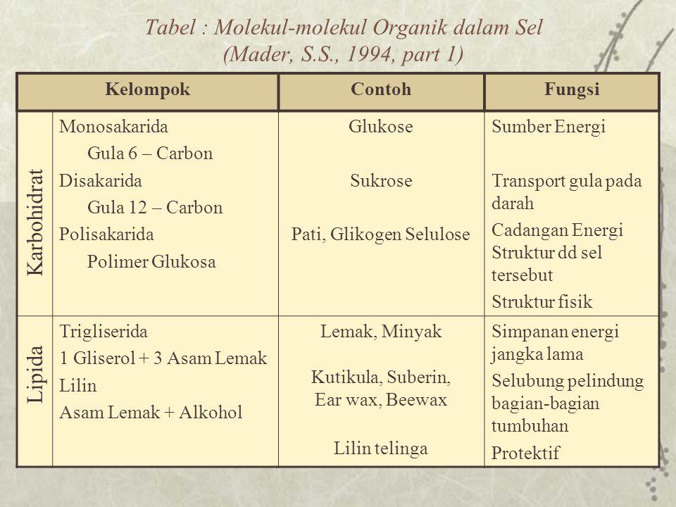 Tabel : Molekul-molekul Organik dalam Sel (Mader, S.S., 1994, part 1)