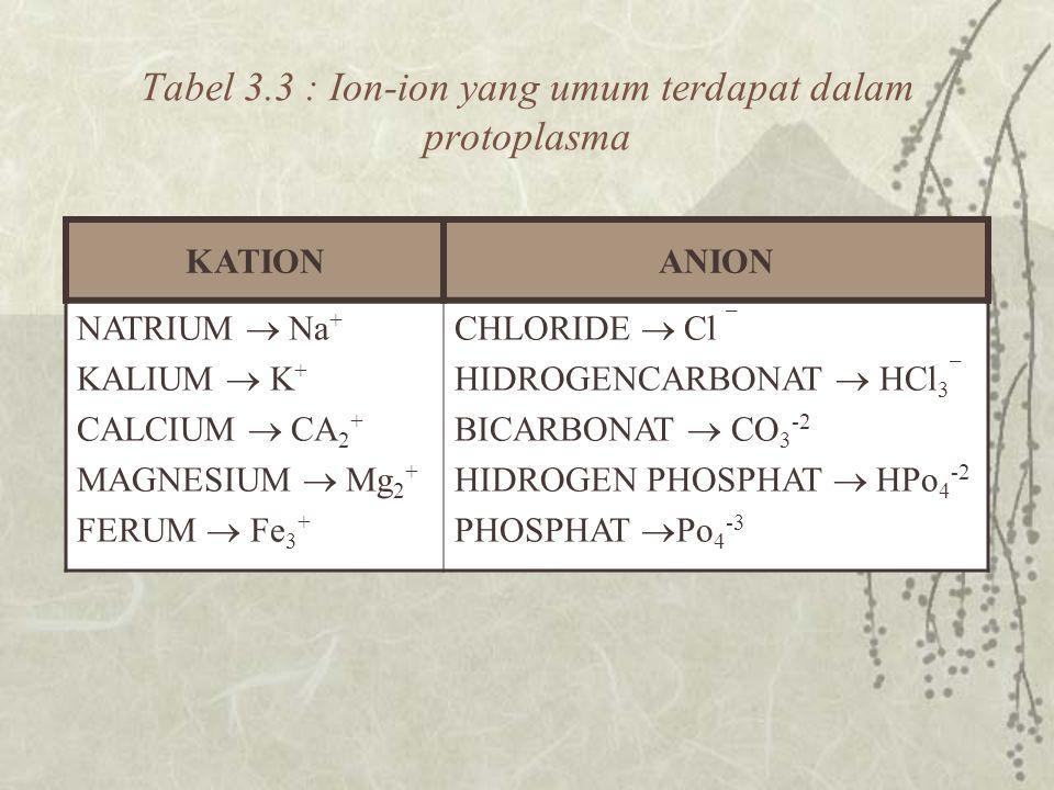 Tabel 3.3 : Ion-ion yang umum terdapat dalam protoplasma