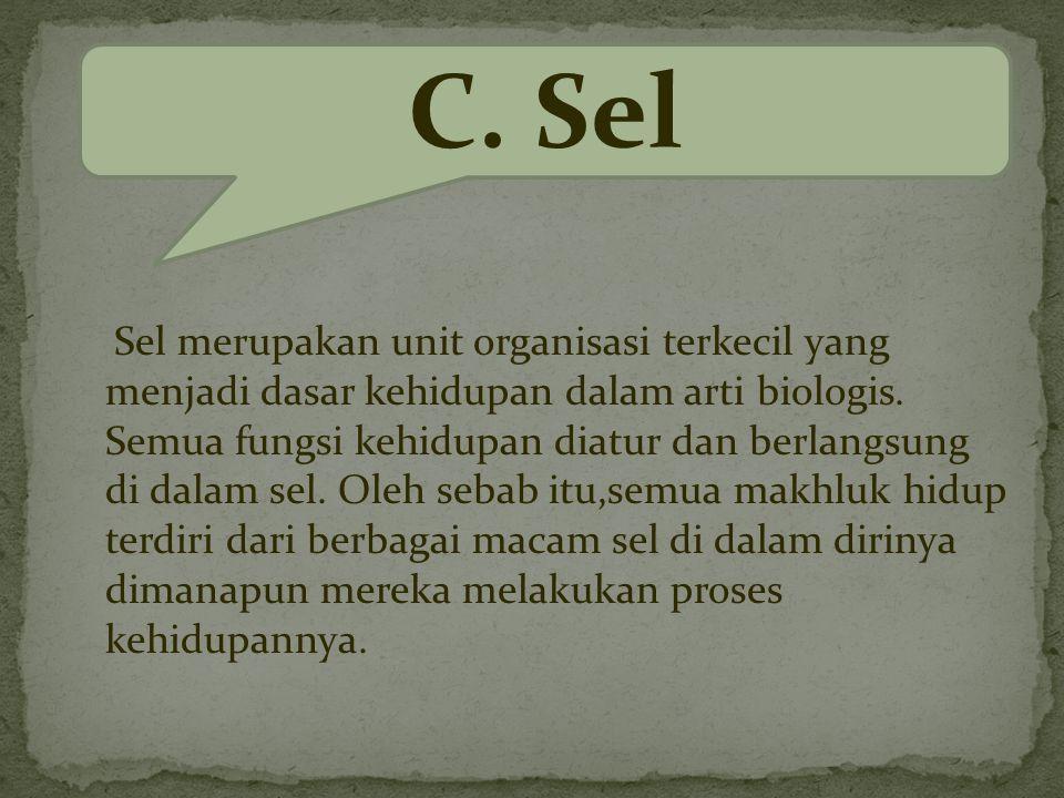 C. Sel