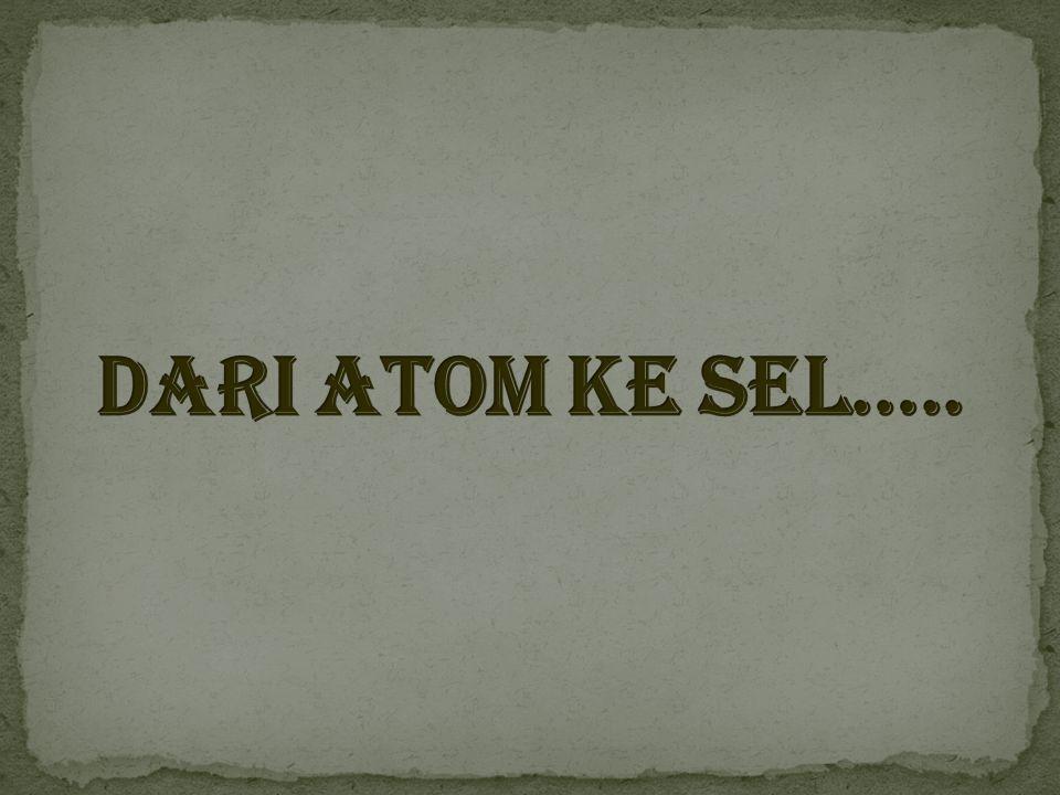 Dari atom ke sel…..
