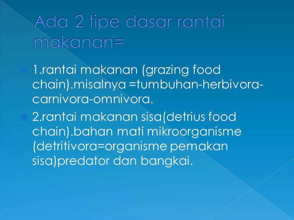 Ada 2 tipe dasar rantai makanan=