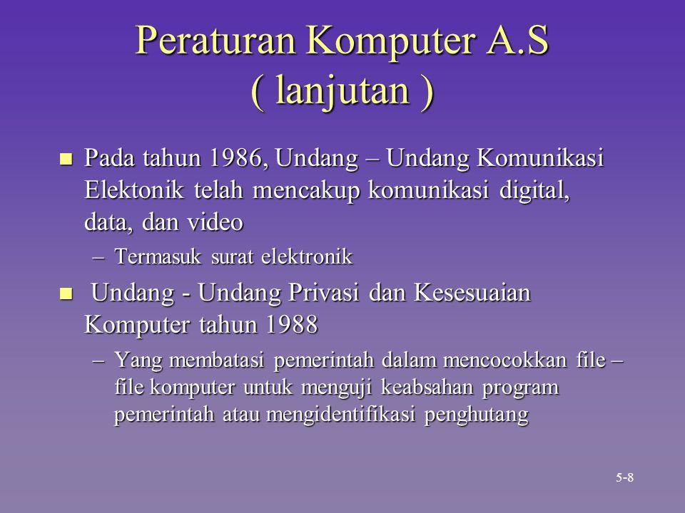 Peraturan Komputer A.S ( lanjutan )