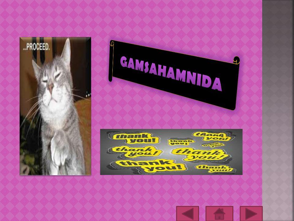 GAMSAHAMNIDA