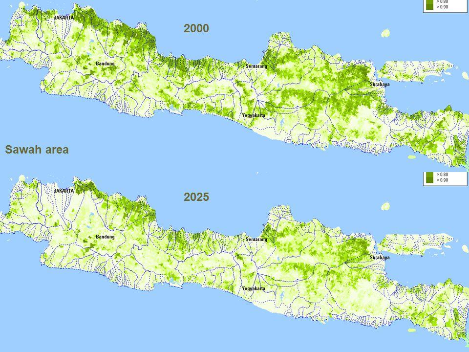 2000 Sawah area 2025