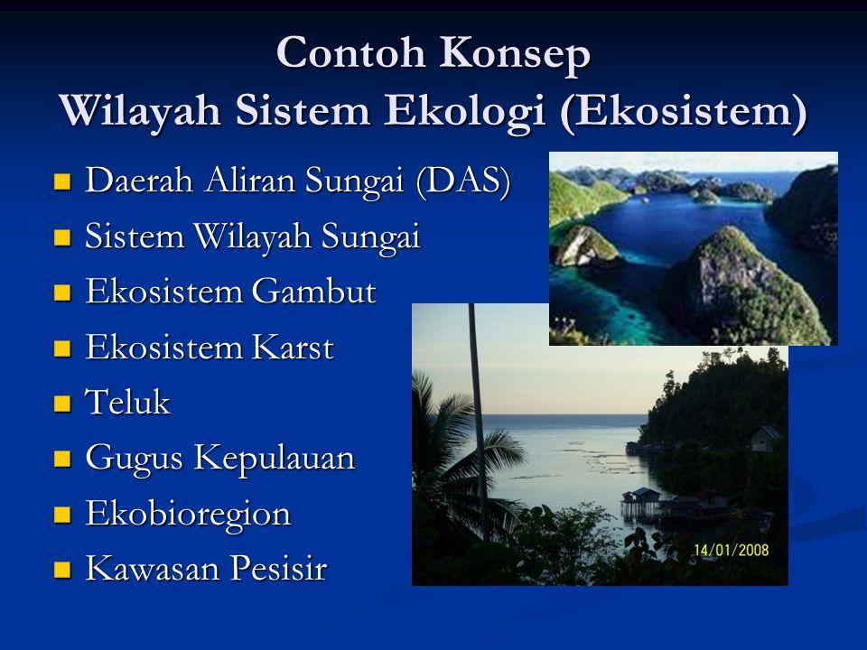 Contoh Konsep Wilayah Sistem Ekologi (Ekosistem)