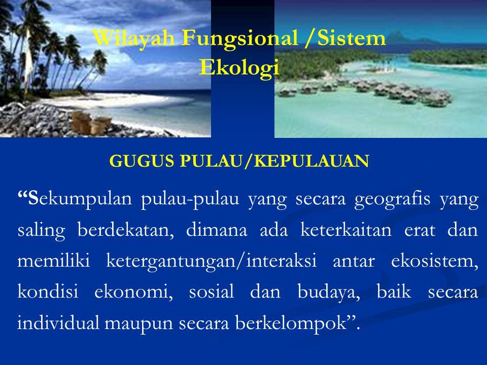 Wilayah Fungsional /Sistem GUGUS PULAU/KEPULAUAN