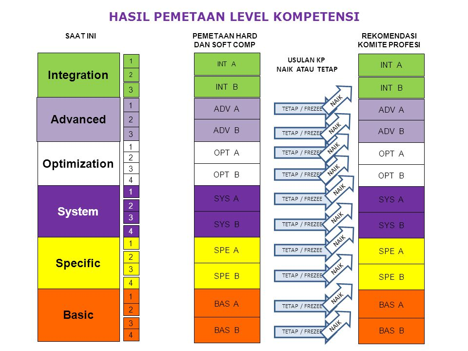 HASIL PEMETAAN LEVEL KOMPETENSI PEMETAAN HARD DAN SOFT COMP
