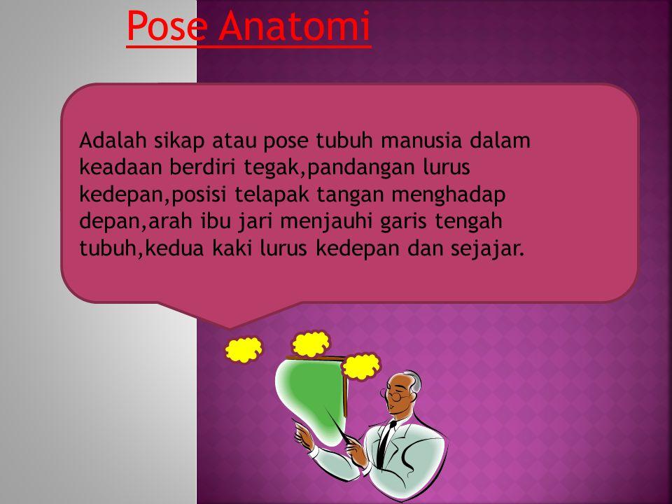 Pose Anatomi