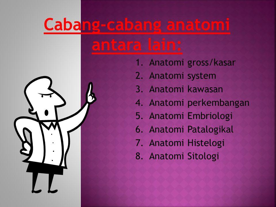 Cabang-cabang anatomi antara lain: