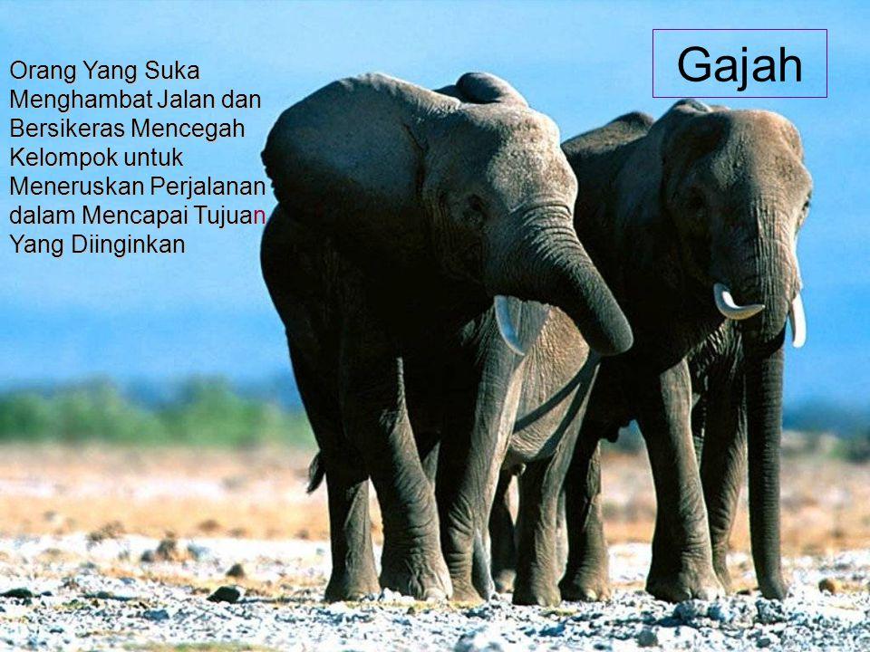 Gajah Orang Yang Suka Menghambat Jalan dan Bersikeras Mencegah Kelompok untuk Meneruskan Perjalanan dalam Mencapai Tujuan Yang Diinginkan.