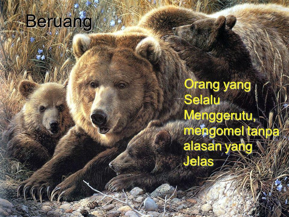 Beruang Orang yang Selalu Menggerutu, mengomel tanpa alasan yang Jelas