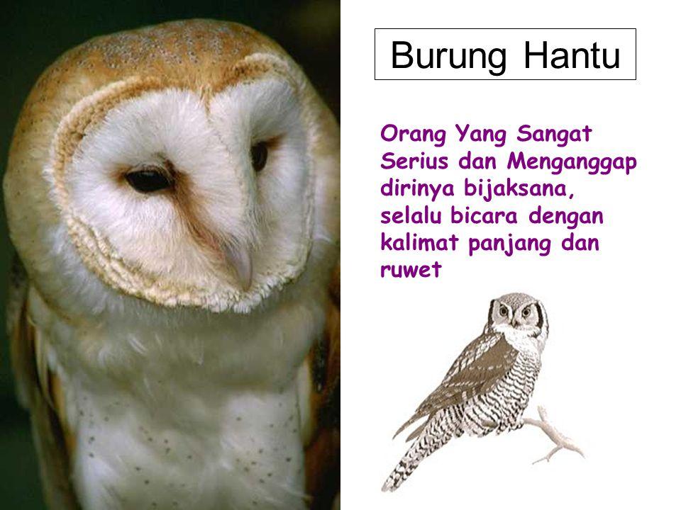 Burung Hantu Orang Yang Sangat Serius dan Menganggap dirinya bijaksana, selalu bicara dengan kalimat panjang dan ruwet.
