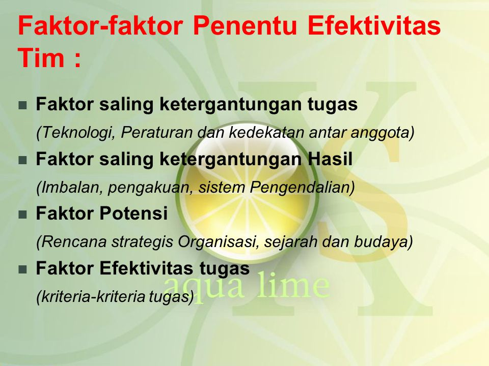 Faktor-faktor Penentu Efektivitas Tim :