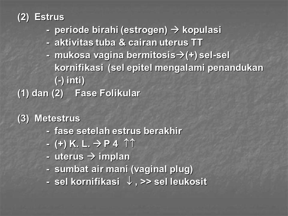 (2) Estrus - periode birahi (estrogen)  kopulasi. - aktivitas tuba & cairan uterus TT. - mukosa vagina bermitosis(+) sel-sel.