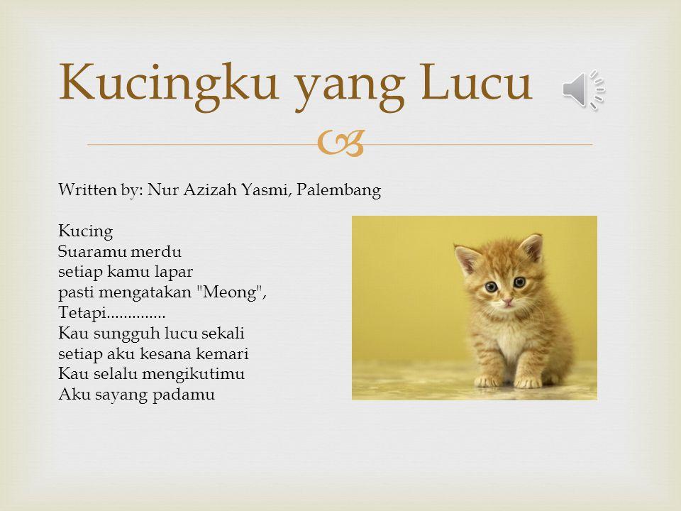 Kucingku yang Lucu Written by: Nur Azizah Yasmi, Palembang Kucing