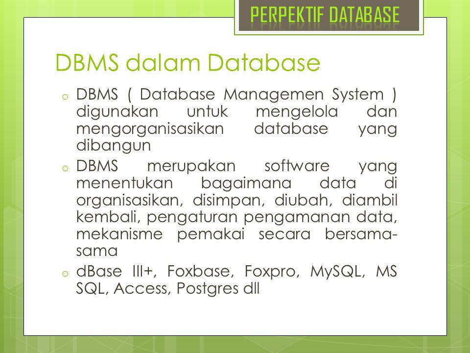 DBMS dalam Database PERPEKTIF DATABASE