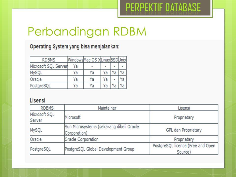 PERPEKTIF DATABASE Perbandingan RDBM