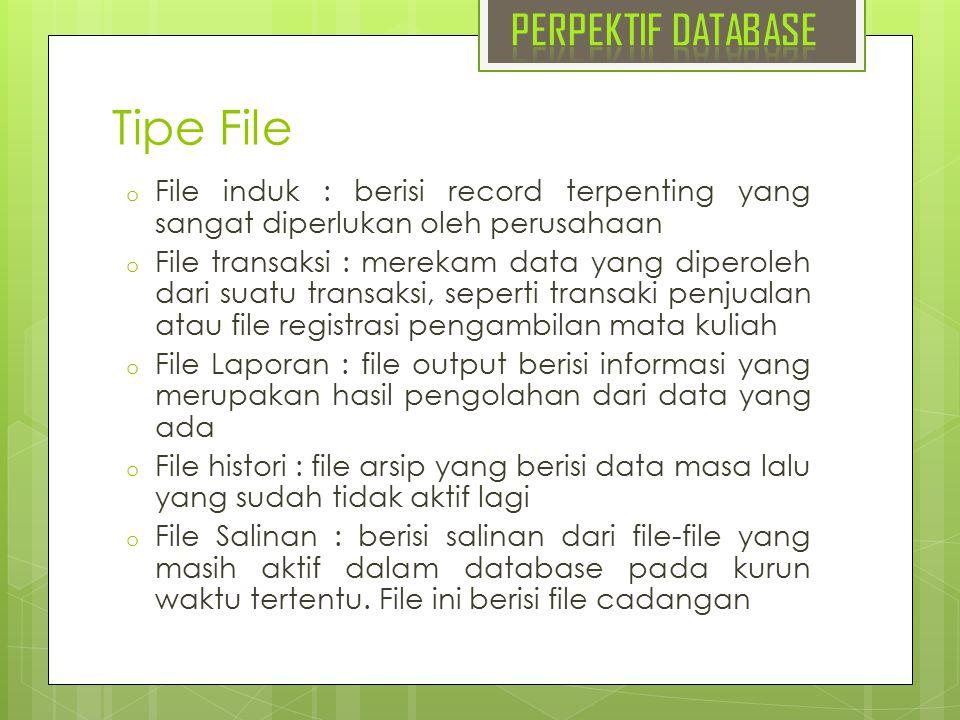Tipe File PERPEKTIF DATABASE