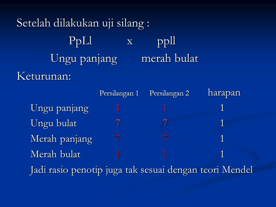 Setelah dilakukan uji silang : PpLl x ppll Ungu panjang merah bulat