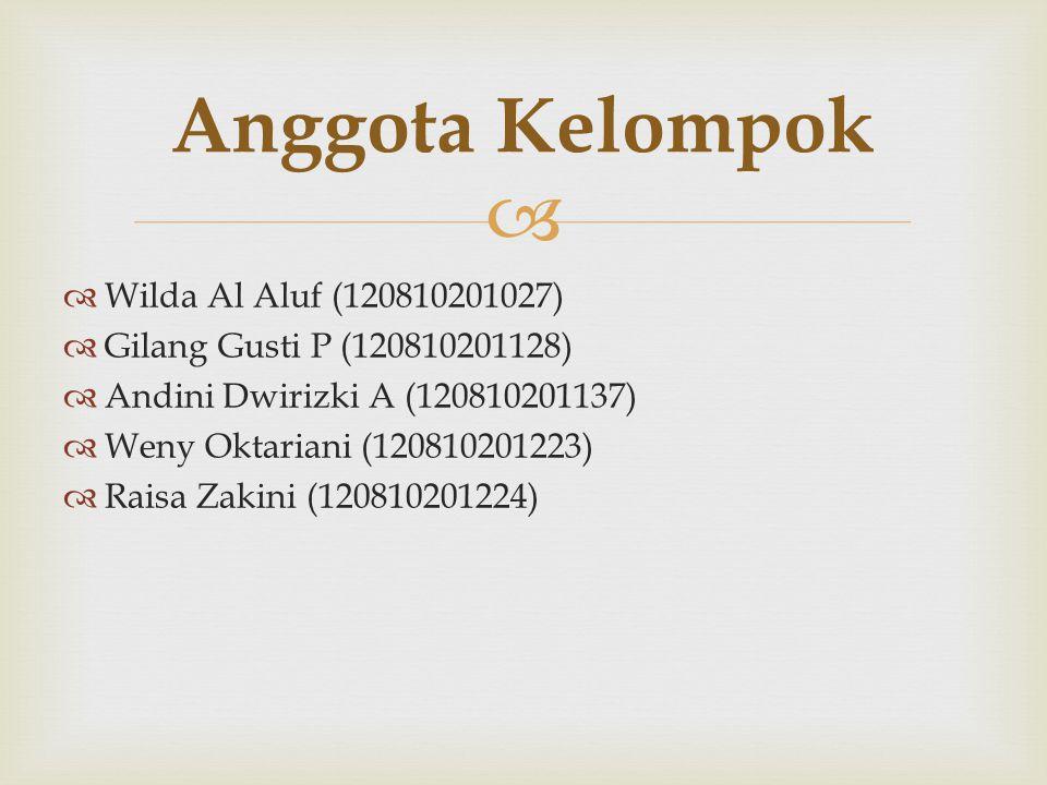 Anggota Kelompok Wilda Al Aluf (120810201027)