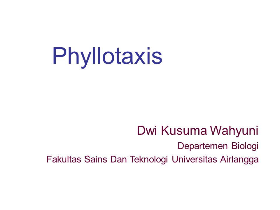 Phyllotaxis Dwi Kusuma Wahyuni Departemen Biologi