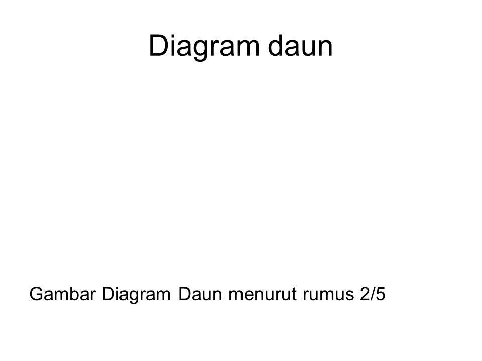 Diagram daun Gambar Diagram Daun menurut rumus 2/5