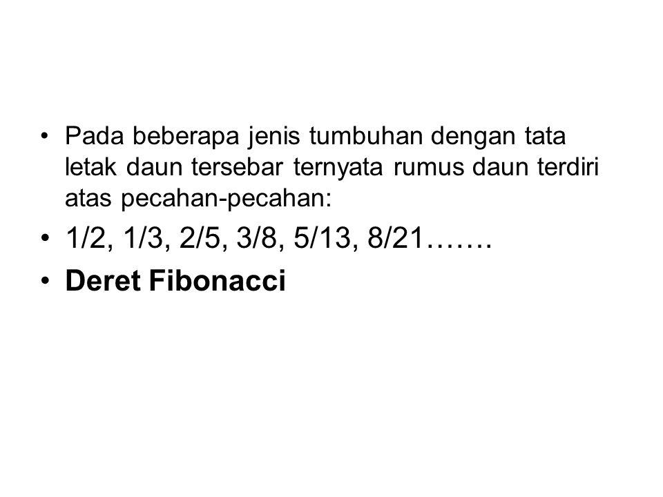 1/2, 1/3, 2/5, 3/8, 5/13, 8/21……. Deret Fibonacci
