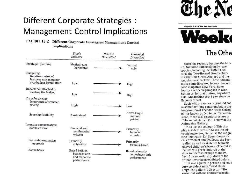Different Corporate Strategies : Management Control Implications