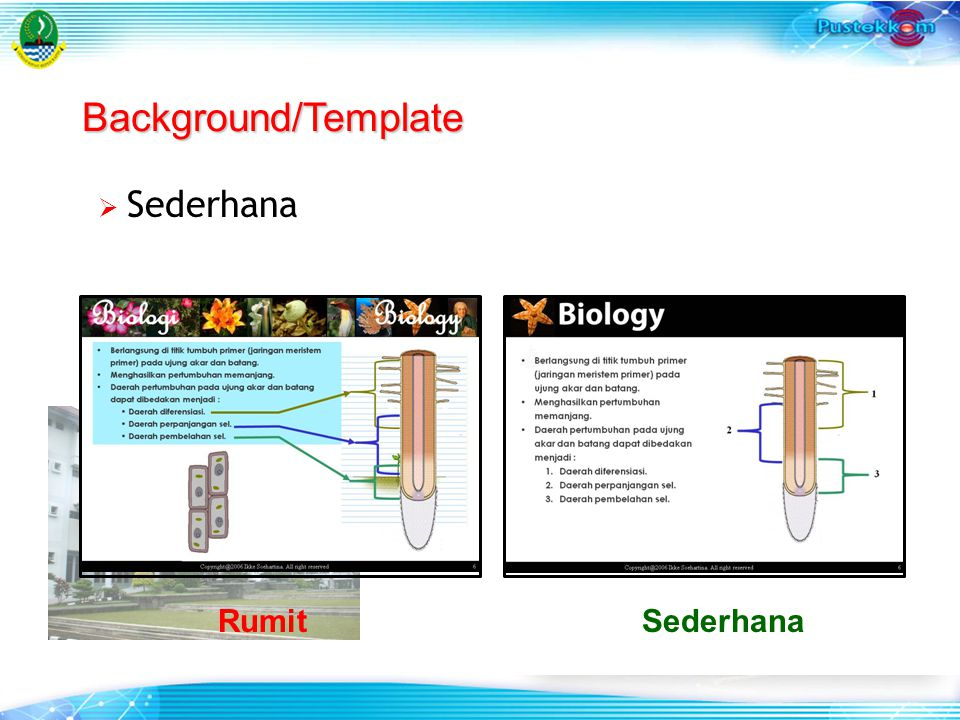 Background/Template Sederhana Rumit Sederhana