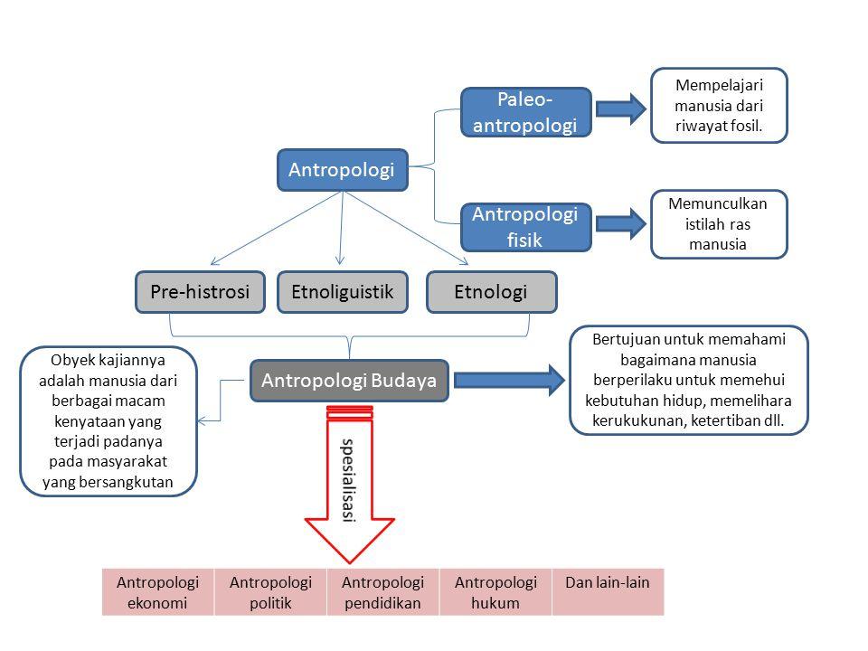 Paleo-antropologi Antropologi Antropologi fisik Pre-histrosi Etnologi