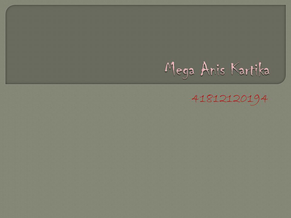 Mega Anis Kartika 41812120194