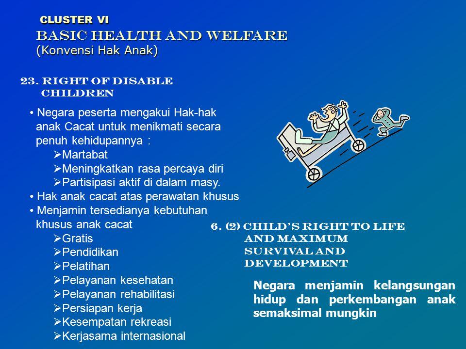CLUSTER VI BASIC HEALTH AND WELFARE (Konvensi Hak Anak)