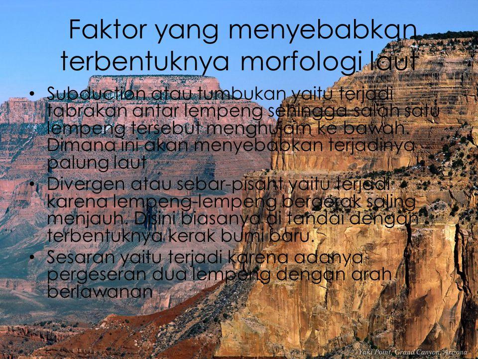 Faktor yang menyebabkan terbentuknya morfologi laut