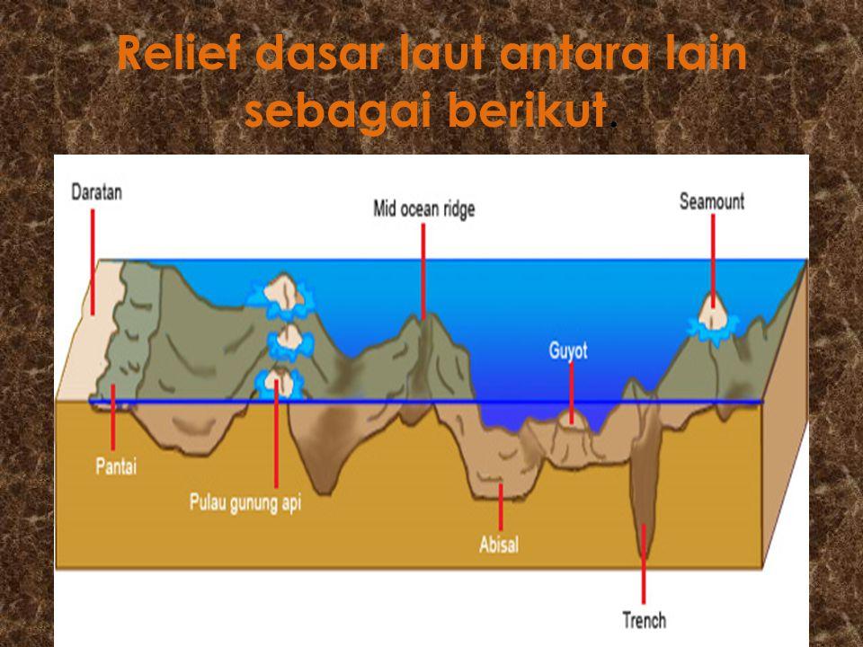Relief dasar laut antara lain sebagai berikut.